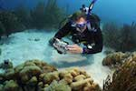 Padi Advanced Openwater
