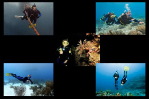 Promotie - Padi Advanced Extended